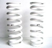 E9x TCKR VVS Alloy Rear Long Springs